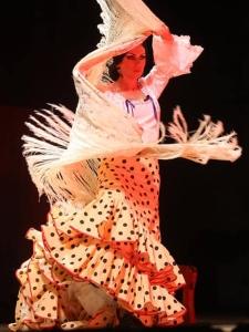 Dilemmas With my flamenco tail coat (2)
